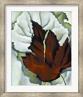 Framed Pattern of Leaves