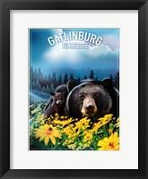 Framed Gatlinburg Tennessee
