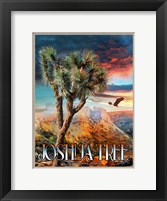 Framed Joshua Tree