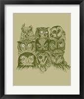 Framed Nine Owls