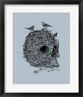 Framed Skull Nest