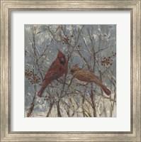 Framed Mr and Mrs Cardinal