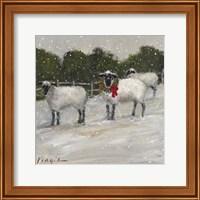 Framed Sheep in Snow