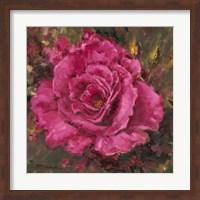 Framed Rose is a Rose