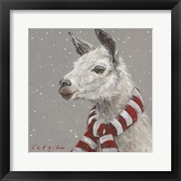 Framed Llama with Red and White Scarf