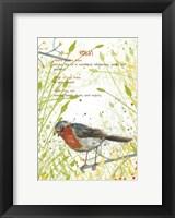 Framed Robin Postcard
