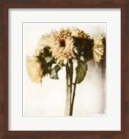Framed Floral Sunflowers White Soft No Darks