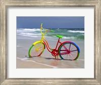 Framed Rainbow Bike