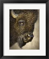 Framed Bison Totem