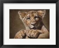 Framed Lion Cub