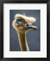 Framed Ostrich Totem