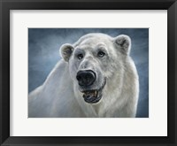 Framed Polar Bear Totem