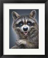 Framed Raccoon Totem