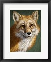 Framed Red Fox Totem