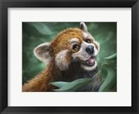 Framed Red Panda Totem