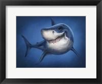 Framed Shark Totem