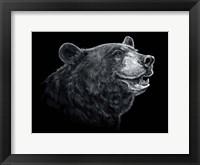 Framed Black White Black Bear