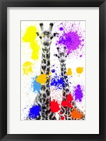 Framed Safari Colors Pop Collection - Giraffes