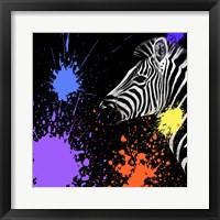 Framed Safari Colors Pop Collection - Zebra II