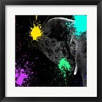Framed Safari Colors Pop Collection - Elephant Portrait II