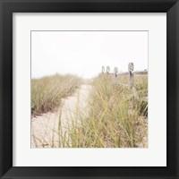 Framed To the Beach