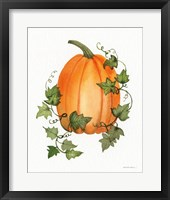 Framed Pumpkin and Vines IV