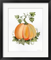 Framed Pumpkin and Vines II