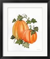 Framed Pumpkin and Vines I