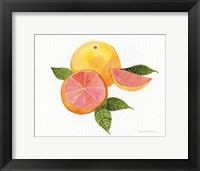Citrus Garden X Framed Print