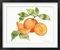 Framed Citrus Garden VIII