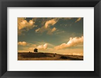 Framed What Beautiful Clouds