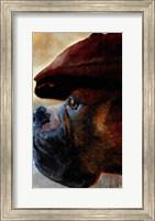 Framed Duke
