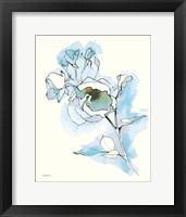 Framed Carols Roses IV Blue