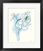 Framed Carols Roses III Blue