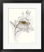 Framed Carols Roses V Off White