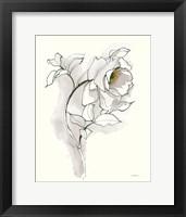 Framed Carols Roses III Soft Gray