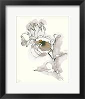 Framed Carols Roses IV Tan