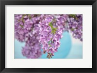 Lilacs in Blue Vase I Framed Print