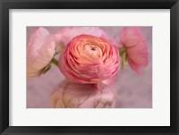 Framed Small Flower