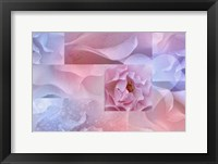 Framed Daydream I