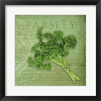Framed Classic Herbs Parsley