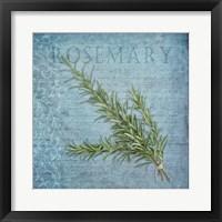 Framed Classic Herbs Rosemary