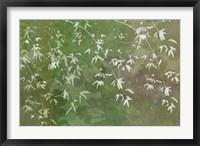 Framed Floral Flurry Green