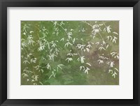 Framed Floral Flurry Green