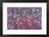 Framed Floral Flurry Violet