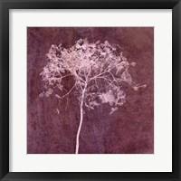 Framed Hortensia Silhouette Wine Red