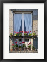 Framed Window With Red Geraniums
