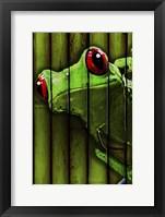 Framed Camo Frog