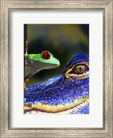 Framed Amphibean & The Reptile