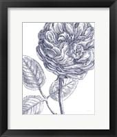 Framed Belle Fleur III Light Crop